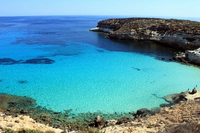 conigli-island